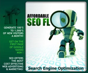 Tampa Florida Search Engine Optimization (SEO) services firm specialist